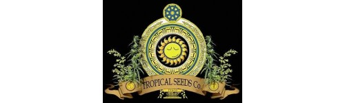 THE TROPICAL SEEDS CO.